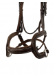 The Bedminster Bridle