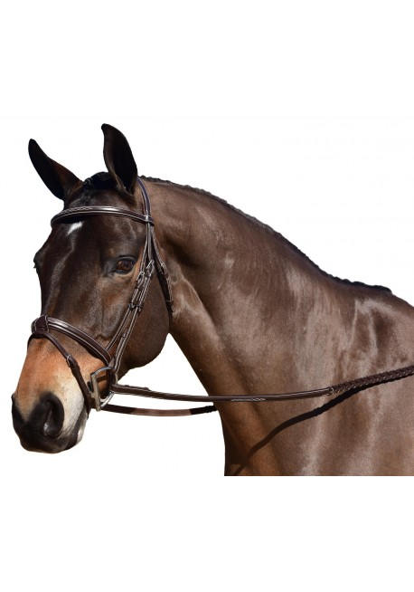 Voltaire Design Hunter Bridle