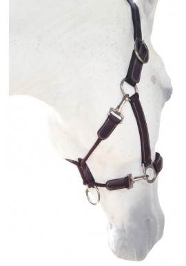 Silver Crown Grooming Halter
