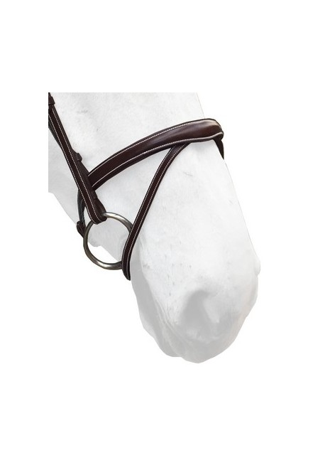 Flash 3D Noseband