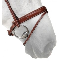 Silver Crown Pull Back Noseband