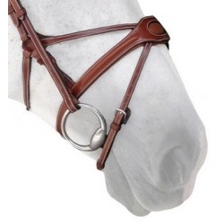 Silver Crown Spider Noseband