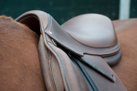 Saddle Fitting Beginner's Guide: Top 3 Signs Your Saddle Doesn't Fit Your Equine